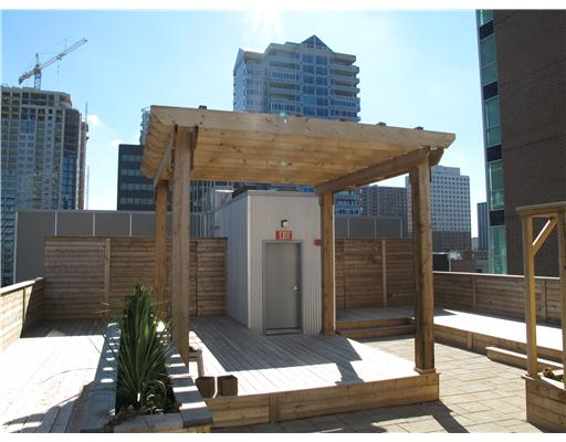 Rooftop Terrace/Common Area