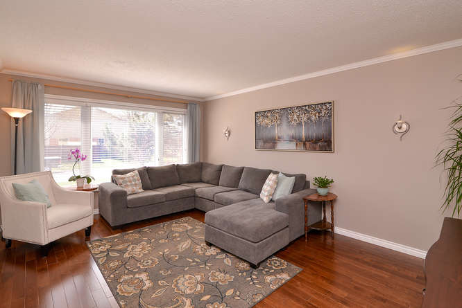 Sun soaked living area on the main level with beautiful hardwood flooring.